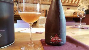 Château Castigno – Les vins